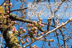 詩画「ありがとう」ってことば…ザプレイズ(ThePraise)桜のつぼみの写真